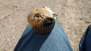 Alan's Blueberry Muffins